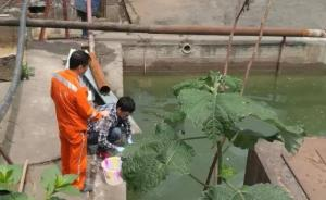 陕西汉中锁定嘉陵江铊污染源头,4人被刑拘、7人被停职