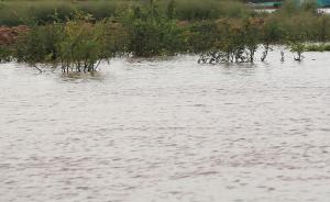 河南新乡4初中生下河洗澡3人溺水,百余人连夜搜救找到遗体