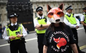 当地时间2017年5月29日,英国伦敦,当地反猎狐示威者在唐宁街10号集会抗议,反对英国首相特蕾莎·梅的竞选承诺中关于撤销狩猎法公投问题。 视觉中国 图
