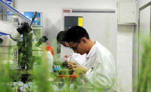教育部:科学事业重大项目验收专家组至少要有一名财务专家