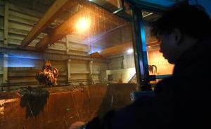 黑龙江生活垃圾焚烧厂8月将安装自动监控设备公开排污信息