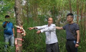 """广西六旬""""神棍""""以做法为名骗奸少妇,已被刑拘"""