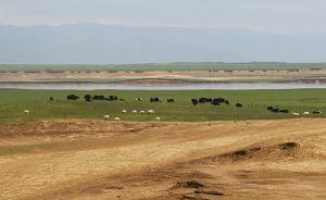 十省区成万里风沙带,沙化土地封禁保护方案要求三年治理过半