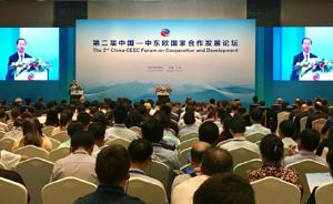 """""""中国与中东欧合作对欧盟透明"""",匈塞铁路塞段有望年底开工"""
