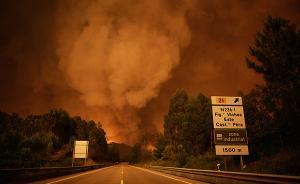 葡萄牙森林火灾已致24人死亡20人受伤,火势尚未得到控制