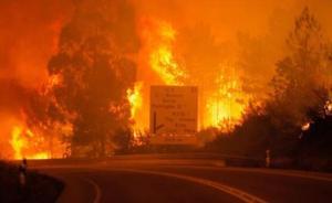 葡萄牙森林火灾已致43死59伤:死亡人数或将攀升