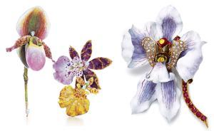 有一种珠宝的光彩,叫做生如夏花之绚烂