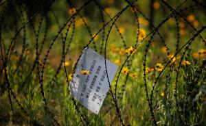 """韩国防部否认已启动""""萨德""""环境评估工作"""