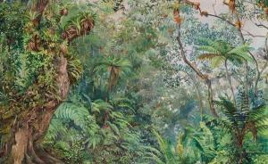 植物猎人:寻觅异国植物的艰辛远行