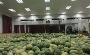 河南贫困毕业生家里卖瓜难,母校一次买光26吨请师生吃瓜