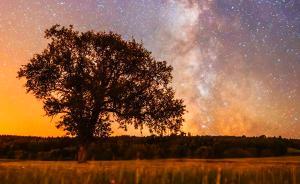 """暗夜征途:真正的""""追星""""之旅"""