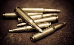 湖北查办三厅局级官员,其中一人涉非法持枪、弹药等四罪被诉
