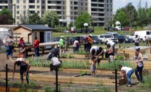 100城市方案③|可持续社区:从家居改造到智能设施