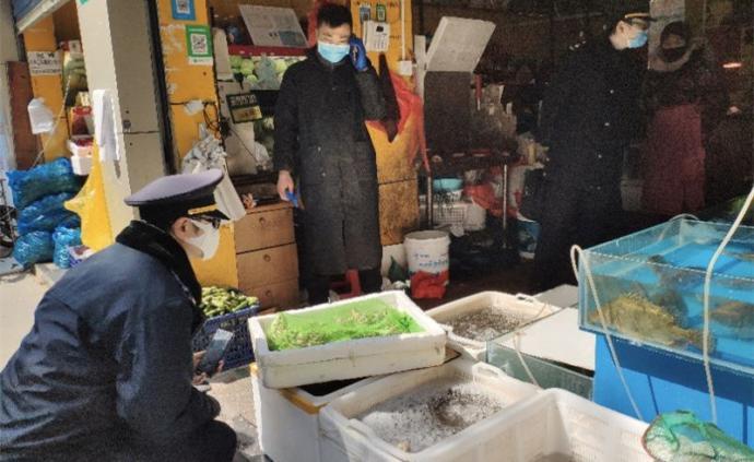 在滬販賣重點保護野生動物黑斑蛙,經營者將被從重處罰