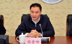 新疆和田地委原书记张金标被双开:履行反恐维稳政治责任不力