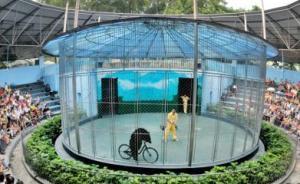 广州动物园结束24年马戏表演,动物训练不再为取悦游客