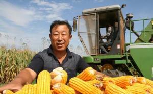 农业部:城乡差距缩小,今年农民人均收入将突破1.3万元