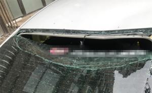 女模特发微博称有人高空抛猫砸坏车辆,大连警方:暂无法确定