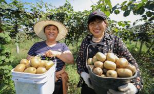 世行行长金墉:中国使8亿人口脱贫,值得中等收入国家借鉴