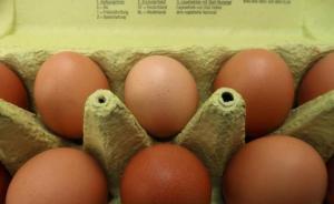 """香港检出欧洲""""毒鸡蛋"""",官方:受污染鸡蛋全下架"""