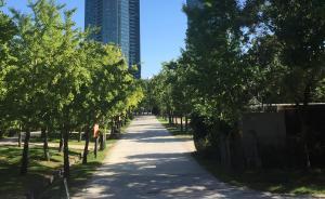 市民参与|韩国首尔林:与市民组织共同成长的公园