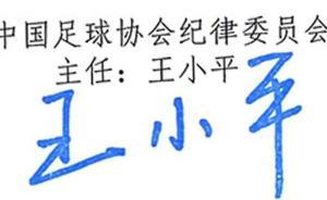 中超罚款总额276万!王小平和他的纪律委员会被误解了吗