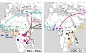 国际团队首次绘制霍乱迁徙地图:全球性暴发的源头是亚洲菌株
