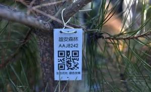"""雄安新区""""千年秀林""""工程开工,每棵树都有专属""""身份证"""""""