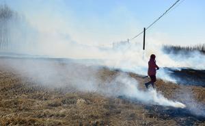 环保部:秸秆禁烧形势总体严峻,吉林省焚烧火点增加783%