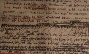 作家王雪瑛对话北大学生:文学首先是语言的艺术