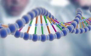 中科院和北大宣布转基因有毒?又是一场假警报