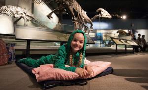 夜游博物馆不稀奇,现在我们讨论的是哪些博物馆最好睡