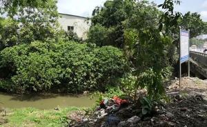 光明日报评广西玉林南流江污染:河长制不是竖块牌子就行了